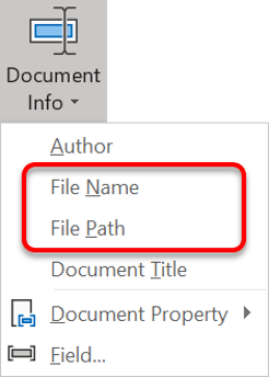 Insert the file name and path into the header and/or footer via the Document Info button, an integral part of the Word page settings